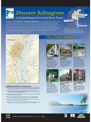 Selinsgrove River Town Panel